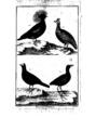 Encyclopedie volume 5-066.png
