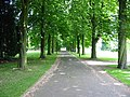 Entrance Drive to Ednaston Manor - geograph.org.uk - 184809.jpg