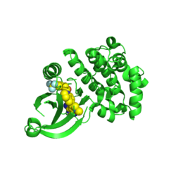 Eukaryotic translation initiation factor 2-alpha kinase 3 (PERK) Cytoplasmic domain.png