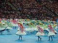Euro 2012 opening ceremony (05).jpg