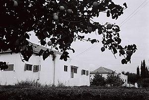 Kfar Gidon - Kfar Gideon, 1946