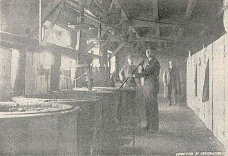 Fish oil - Fish oil rendering in Port Dover, Ontario, 1918