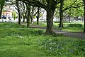 Fairview Park - geograph.org.uk - 1872113.jpg