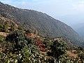 Falam, Myanmar (Burma) - panoramio (65).jpg