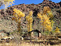 Fall foliage at Phantom Ranch.JPG