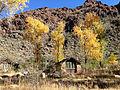 Fall foliage at Phantom Ranch.JPG