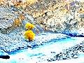 Fall in Hunza-basraa-27.jpg