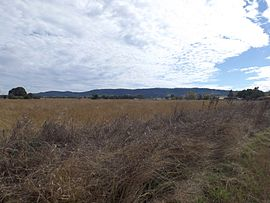 Farms and Little Liverpool Range Ashwell Queensland.jpg