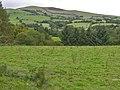 Field near Ty Pella - geograph.org.uk - 986651.jpg