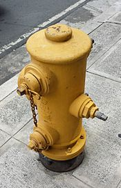 Fire hydrant in Bonifacio Global City