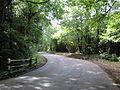 Firestone Copse Road in August 2011 3.JPG