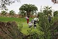 First Hole at Valle de Este Through Trees.jpg