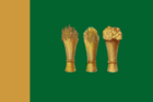 Flag of Penza.png