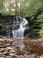 Flickr - Nicholas T - Rosecrans Falls (2).jpg