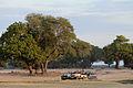 Flickr - ggallice - Jeep fleet.jpg