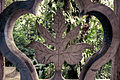 Flora, Xilitla (9128536181).jpg