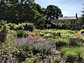 Florence Griswold Museum gardens Old Lyme CT.jpg