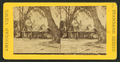 Florida residence of Prof. & Mrs. H.B. Stowe, from Robert N. Dennis collection of stereoscopic views 2.png