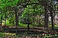 Fontane e gazebo creano angoli suggestivi nel giardino botanico.jpg
