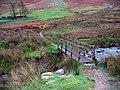 Footbridge crossing Fusedale Beck - geograph.org.uk - 1576815.jpg