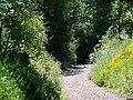 Footpath, Alvediston - geograph.org.uk - 1334135.jpg