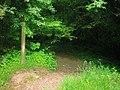 Footpath, Top Carpark, Colby Lodge - National Trust Gardens - geograph.org.uk - 1370021.jpg