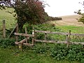 Footpath Stile - geograph.org.uk - 244071.jpg