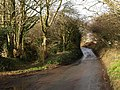 Footpath and lane, Holcombe Down - geograph.org.uk - 1165785.jpg