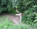 Footpath junction near the Wye at Wilton Bridge - geograph.org.uk - 458681.jpg