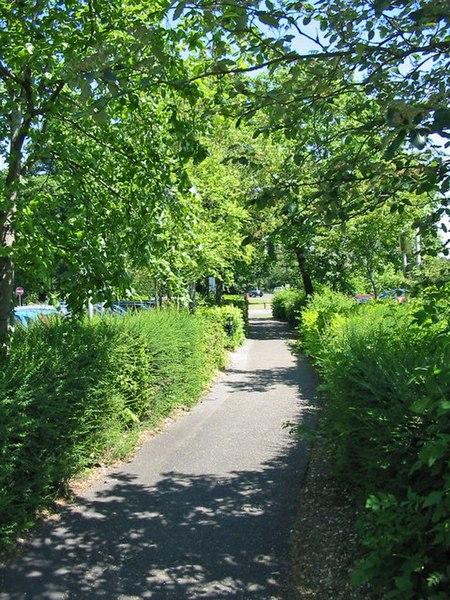 File:Footpath through main car park Ringwood Hants - geograph.org.uk - 184903.jpg