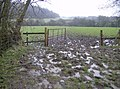 Footpath towards Empshott - geograph.org.uk - 357473.jpg