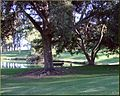 Ford Park, Old Man Walks, Redlands, CA 7-12 (7795784914).jpg