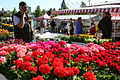 Forssa Market place at summer2006.jpg
