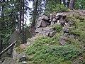Fort Fryderyka-pozostalosci2.jpg