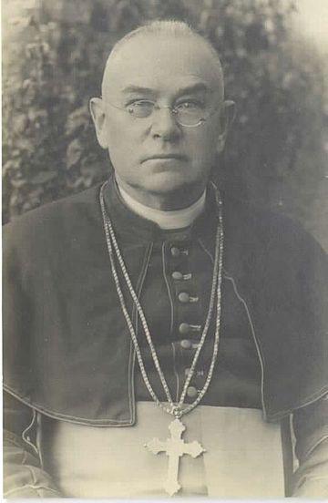 Frančišek Borgia Sedej, Arcivescovo di Gorizia dal 1906 al 1931