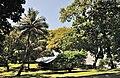 French Guiana îlet la Mère wharf site.jpg