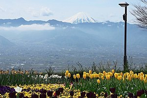 From Fruit park the view of Kofu basin and Mt. Fuji.jpg