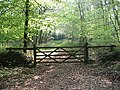 Gate into woodland - geograph.org.uk - 618688.jpg