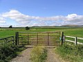 Gateway to livestock farmland - geograph.org.uk - 542479.jpg