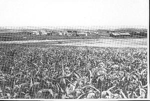Gezer (kibbutz) - Kibbutz Gezer in 1948