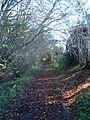 Gipsy Lane - geograph.org.uk - 291616.jpg