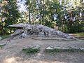 Glehni krokodill 1.jpg