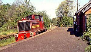 Glenavy railway station - Glenavy railway station in 1980