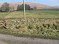Glenries towards Conrig Hill - geograph.org.uk - 697871.jpg