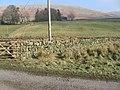 Glenries towards Conrig Hill - geograph.org.uk - 697871.jpg