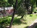 Glogow Fosa 2005 2.JPG