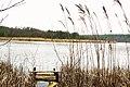 Glowki Lake, Mialy (3).JPG