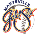 Gold Sox 10 Year.png