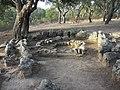 Goni - Parco archeologico Pranu Mattedu - panoramio - gian luca bucci (2).jpg