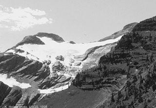 Grant Glacier